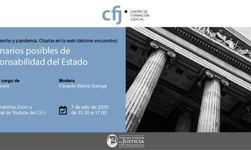 Ciclo Derecho y Pandemia: décimo encuentro