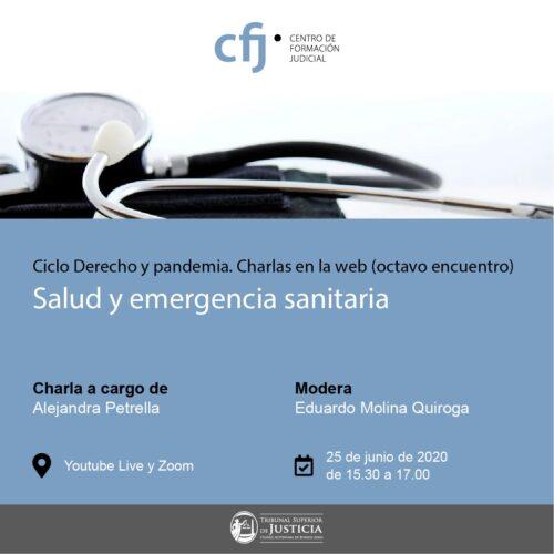 Ciclo de Derecho y Pandemia (octavo encuentro)