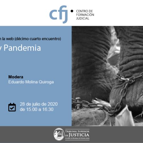Ciclo Derecho y Pandemia: 14° Encuentro