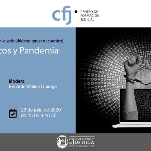 Ciclo Derecho y Pandemia: 13° encuentro