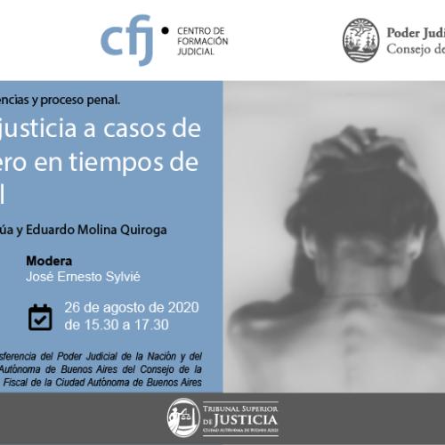 Ciclo sobre transferencia de competencias y proceso penal.  Encuentro: respuestas de la justicia a casos de violencia de género en tiempos de aislamiento social