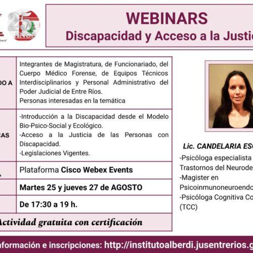 """WEBINARS """"DISCAPACIDAD Y ACCESO A LA JUSTICIA"""" – Instituto """"Dr. Juan Bautista Alberdi"""" (Entre Ríos)"""