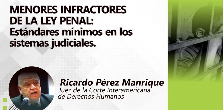 """Conferencia """"Menores Infractores de la Ley Penal. Estándares mínimos en los Sistemas Judiciales"""". RIAEJ-REFLEJAR-CEJU"""