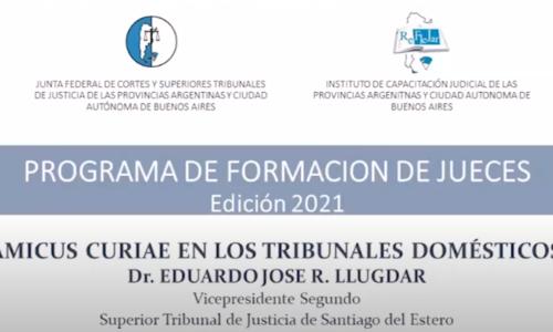 """Módulo III: """"AMICUS CURIAE EN LOS TRIBUNALES DOMÉSTICOS"""" – Dr. Eduardo José R. Llugdar"""